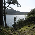 View of Loch Ewe from the gardens