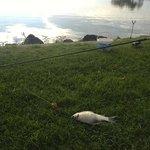 улов местных рыбаков