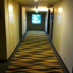The Corridor's View (1)