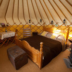 Harbour Retreat Yurt