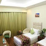 Executive Room - Twin