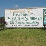 Sharon Springs NY