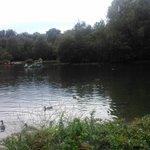 El lago.