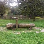 El parque.