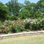 Floral display, Atlanta Botanical Gardens