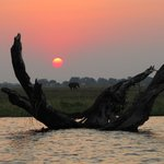 Boat Trip - Sunset on Chobe River