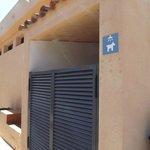 Puerta ducha perros