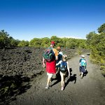 Enjoy a walk through lava fields