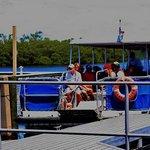 Ferry docking at Caladesi Island