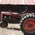 Outdoor display, old tractor