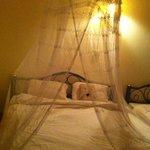 Sweet Mosquito net