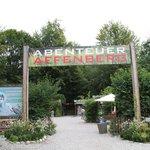 Abenteuer Affenberg