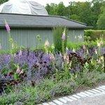 Сад Розендаль, цветочный бордюр