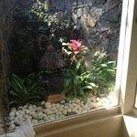 Bathroom overlooking private garden