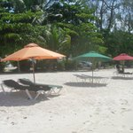 Parasols and loungers
