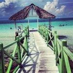 The Beach... Amazing!