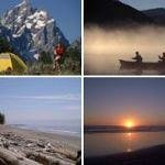 Hiking, Kayaking, Cycling,Whale watching in our area
