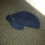 Someone's underwear in the room