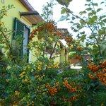 la facciata del b&b dal giardino