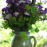 Iris arrangement, dramatic and full