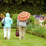 Rain or shine, the Display Gardens are open at bloom time