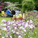 Picnicking in the Display Gardens at bloom time