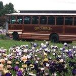 Trolley brings visitors to the Display Gardens during Keizerfest Weekend