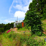 Forest Green Yurt