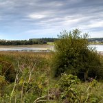 Enjoy the Waterfowl and Views at Ebey's