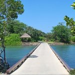 Bridge to the private island