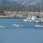 Canoes in Ventura Harbor--from our table at Brophy Bros.