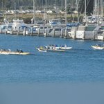 Canoes in Ventura Harbor paddling past moored cabin cruisers and sailboats