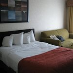 Room 202, Quality Inn, Sarnia, bed and couch