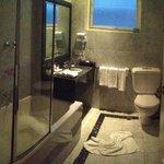 Deluxe Suite Room 352