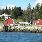 McLoon's Lobster Shack from the water!