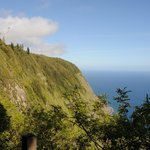 View from Kalaupapa Trail (looking down)