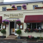 The Bay Horse on a Sunny Day