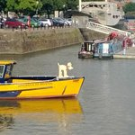 One of the Gromits on a boat trip down docks