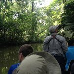Early morning wildlife tour in the jungle