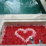 our bathtube