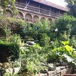 garden & wall