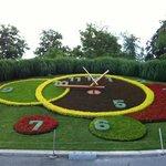 Flower Clock^^