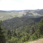 beautiful view in the Black Hills