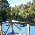 Vista desde el balcón hacia el bosque