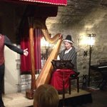 the amazing harpist