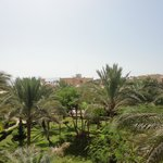 More garden view