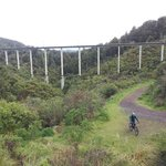 Historic Hapuawhenua Viaduct, Old Coach Road