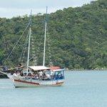 Baia dos Golfinhos - Escuna Maresia