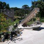 A criançada adoro os crocodilos !!!