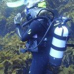 Marion, Dive Guide Extraordinaire!